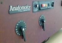 анатомотор